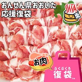 【30%OFFクーポン対象】【応援企画】おんせん県おおいた ふっこう復袋(福袋) 精肉詰め合わせセットA 送料込み 冷凍 豚肉 大分県支援 復興 トキハインダストリー