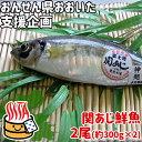 【応援企画】おんせん県おおいた 活締めした新鮮な関アジ 鮮魚 2尾(約300g×2) 冷蔵便 送料込み 大分県支援 復興 脂が…