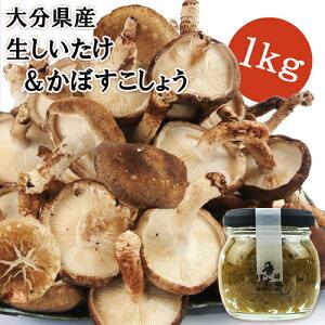 [限定20%OFFクーポン]干し椎茸日本一の大分県産 湯布院生まれ香ぼす胡椒セット 生しいたけ1kg&かぼす胡椒90g 100%国産 無農薬栽培 由布のしいたけ【送料無料】BFクーポン
