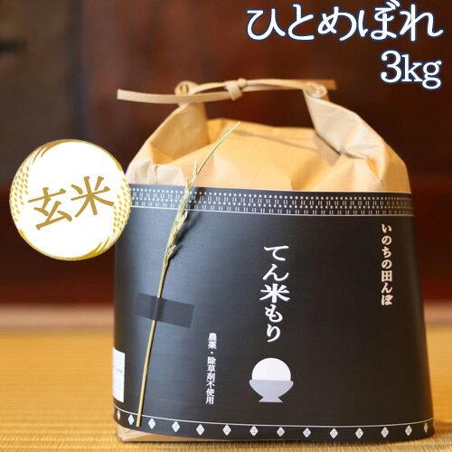 大分県竹田市産 ひとめぼれ 特別栽培米(玄米)【無農薬】「てん米もり」3kg【送料無料】【お歳暮ギフトクーポン】