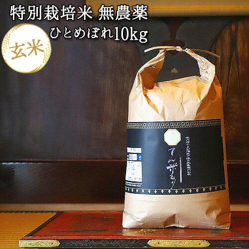 大分県竹田市産 ひとめぼれ 特別栽培米(玄米)【無農薬】「てん米もり」10kg【送料無料】【お歳暮ギフトクーポン】
