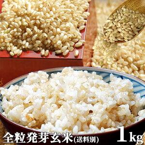 5%還元 大分県産 無洗米 手作り発芽玄米 お試し 1kg(真空パック) 準無農薬(減農薬) スタリオン日田 (送料別) 【お歳暮ギフトクーポン】