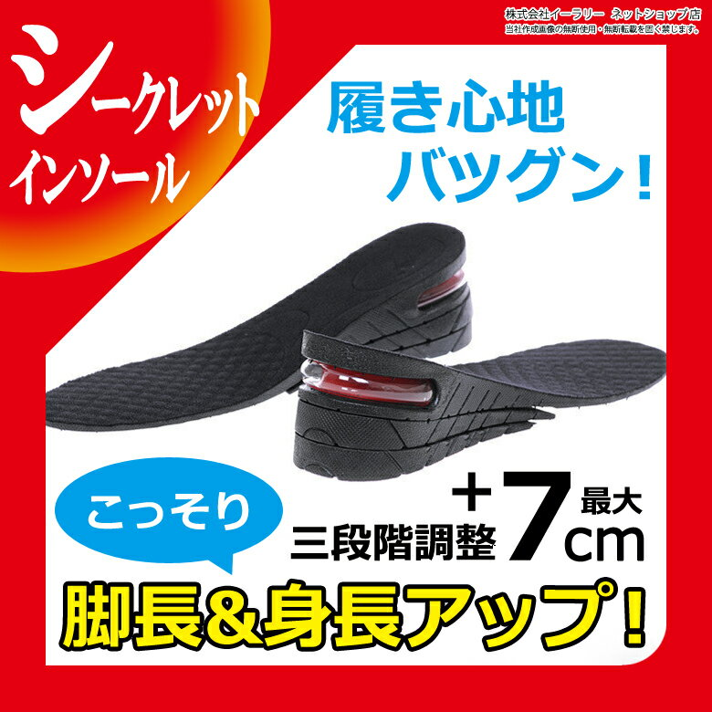 送料無料 シークレットインソール 7cm 左右1組 メンズ レディース 3段階調整 3+2+ 2cm 中敷き エアインソール エアキャップ 身長アップ シークレット 靴 シークレットシューズ インソール ER-SCIS-ME