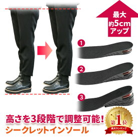 シークレットインソール 22.5cm〜27.0cm レディース メンズ 最大5cm 三段階調整 男性 女性 シークレット 調整可能 かかと ブーツ スニーカー 美脚効果 脚長 おしゃれ 上げ底 あげ底 中敷き エアーインソール エアインソール 冬靴 冬物 冬 ER-SCIS-ME