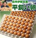 今が旬!平飼い卵の初産み卵80個+破損保証のおまけ28個(卵のサイズはMS〜Mです。)