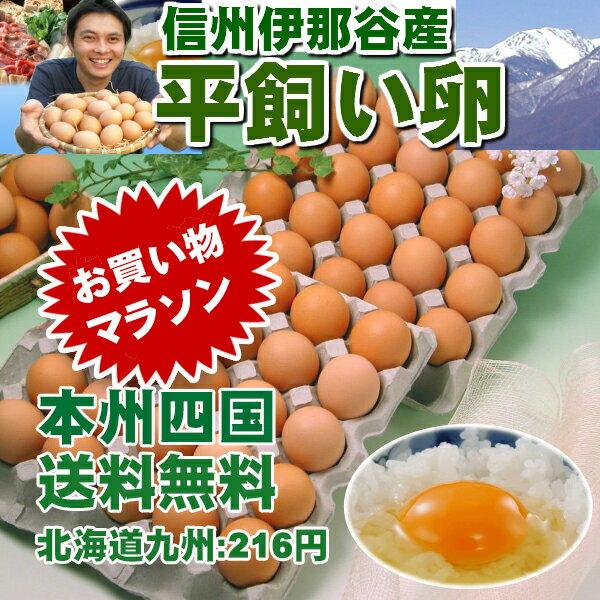 平飼い卵50個
