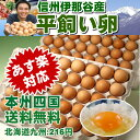 平飼い卵80個 【本州・四国 送料無料】【RCP】★【smtb-t】