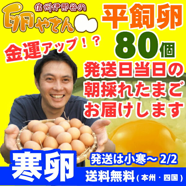 ★寒卵★平飼い卵80個