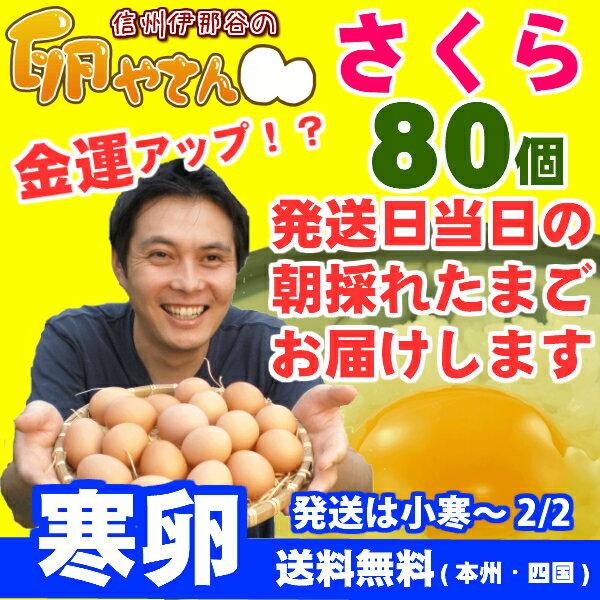 ★寒卵★さくらたまご80個(60個+破損保証20個含む)