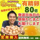 ■10個パック対応■ 有精卵80個 【本州・四国 送料無料】 【RCP】★【smtb-t】
