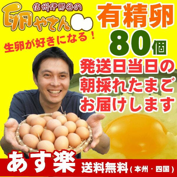 ■10個パック対応■ 有精卵80個