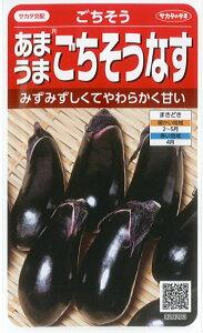 サカタのタネ ナス 種子 「ごちそうなす」 小袋 0.6ml 規格 ナス 水茄子 水ナス 種子 野菜種 黒 生食育つ苗の本数 : およそ 40本