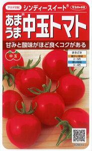 サカタのタネ トマト種子 「シンディースイート」小袋 21粒 規格 種 野菜種 シンディースィート ミディ トマト 中玉 トマト 野菜種子 野菜の種 あまうま中玉とまと 低農薬 栽培