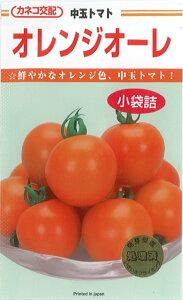 カネコ種苗 トマト種子 「オレンジオーレ」 小袋(20粒)規格 オレンジ 中玉トマト ミディトマト 種 野菜種 種子