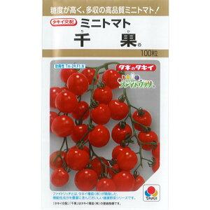 タキイ種苗 トマト種子 「千果」 100粒規格 種 ミニトマト 多収 高糖度 タキイ交配 一代交配