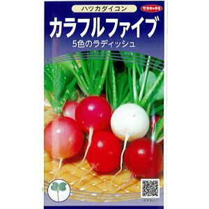 サカタのタネ ダイコン 種子 「カラフルファイブ」 小袋 6ml 規格 種 野菜種 アブラナ科 二十日ダイコン 二十日大根 種 20日大根 種 ミックス 白 赤 桃 紫 うす桃 プランター 対応