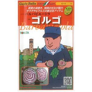 トキタ種苗 グストイタリア ビーツ 種子 「ゴルゴ」 小袋(80粒)規格[野菜種][イタリア野菜][テーブルビート][砂糖大根][種]