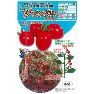 トキタ種苗 トマト 種子 「ジャングルミニトマト」 小袋 8粒規格 種 野菜の種 野菜種 ミニトマト トキタ プランター栽培 ハンギング ベランダ栽培 放任栽培