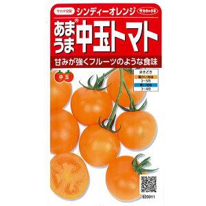 サカタのタネ トマト種子 「シンディーオレンジ」小袋 14粒 規格 種 野菜種 シンディーオレンジ ミディ トマト 中玉 トマト 野菜種子 野菜の種 あまうま中玉とまと