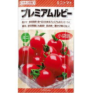 カネコ種苗 トマト 種子 「 プレミアムルビー 」 小袋 17粒 規格 トマト 種 種子 ミニトマト ミニ トマト つくりやすい 割れが少ない 高糖度