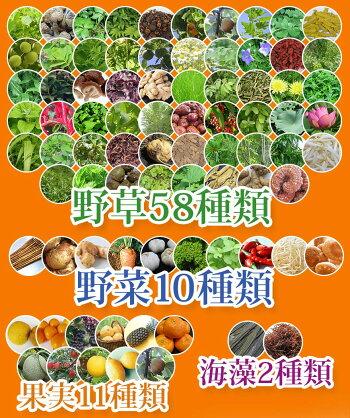 野草酵素無添加コンブチャ+酵素ドリンクグリーンナチュラ日本製