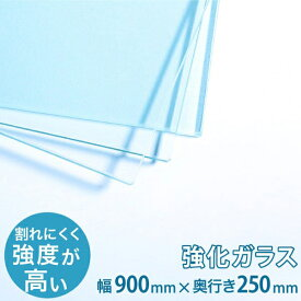 ガラス棚板用 透明強化ガラス W900×H250×T5mm 規格サイズ 安全 硝子 カット シェルフ DIY用品 国内加工 建材 \丁寧梱包 運送保証 お客様が割っても保証/ オーダーガラス板.COM