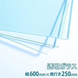 ガラス棚板用 透明ガラス W600×H250×T5mm 規格サイズ 硝子 カット シェルフ DIY用品 国内加工 建材 \丁寧梱包 運送保証 お客様が割っても保証/ オーダーガラス板.COM