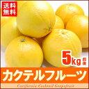 カクテルフルーツ(約5kg)アメリカ産 グレープフルーツ オレンジ 送料無料