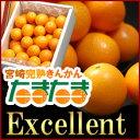 たまたまエクセレント2-3L(1kg)宮崎産 糖度18度以上 宮崎金柑 きんかん キンカン 送料無料