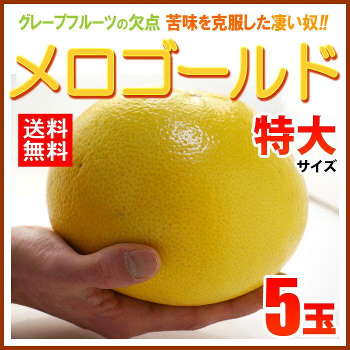 完熟メロゴールド 特大(5玉/約4kg)アメリカ産 グレープフルーツ メローゴールド 送料無料