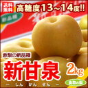 新甘泉梨(2kg)鳥取産 新品種の赤梨 しんかんせん 糖度13度以上 送料無料