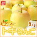 トキりんご(5kg)青森産 糖度15度以上選果 リンゴ 林檎 送料無料