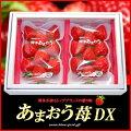 博多あまおういちごDXデラックスグレード!
