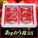 博多あまおう苺DX(270g×2P)福岡産 いちご イチゴ 甘王 贈答用 苺 送料無料