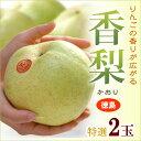 香梨(大玉2玉)徳島産 特大4-5Lサイズ かおり 青梨の最大級品種 送料無料