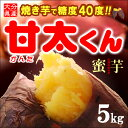 甘太くんM-L(5kg)大分産 紅はるか さつま芋 サツマイモ 甘藷 焼き芋 焼いも 薩摩芋 送料無料