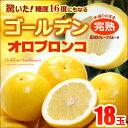 ゴールデンオロブロンコ中玉(18玉)カリフォルニア産 グレープフルーツ 高糖度 送料無料