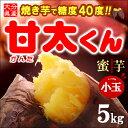 甘太くんSサイズ(5kg)大分産 紅はるか さつま芋 サツマイモ 甘藷 焼き芋 焼いも 薩摩芋 送料無料
