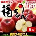 糖度14度以上!福ちゃんりんご6玉