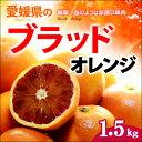 ブラッドオレンジ(L-2L/約1.5kg)愛媛産 秀品 タロッコ 送料無料