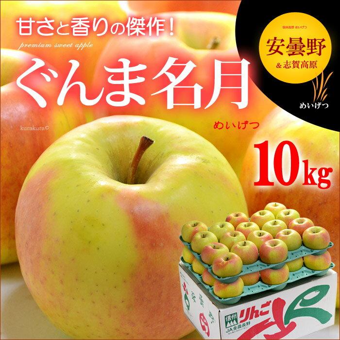 ぐんま名月りんご(10kg)長野産 リンゴ 林檎 送料無料