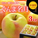 ぐんま名月りんご(3kg)長野県安曇野産 リンゴ 林檎 送料無料