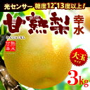甘熟幸水梨3L-5L(3kg)産地はお任せ 糖度12度以上の大玉幸水梨だけをお届け 送料無料