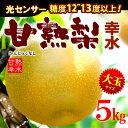 甘熟幸水梨3L-5L(5kg)産地はお任せ 糖度12度以上の大玉幸水梨だけをお届け 送料無料