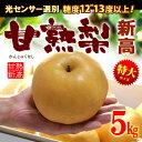 甘熟新高梨6L(約5kg)産地はお任せ 秀品 糖度12度以上の特大新高梨 送料無料