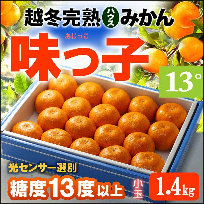 越冬完熟無加温ハウス栽培 味っ子みかん(約1.4kg)長崎産 ハウスみかん 蜜柑 送料無料