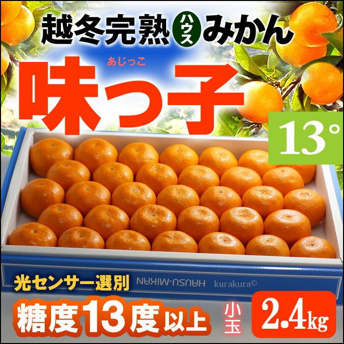 越冬完熟無加温ハウス栽培 味っ子みかん(約2.4kg)長崎産 ハウスみかん 蜜柑 送料無料