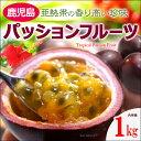 パッションフルーツ(11-15玉/約1kg)鹿児島産 高糖度 トケイソウ 送料無料