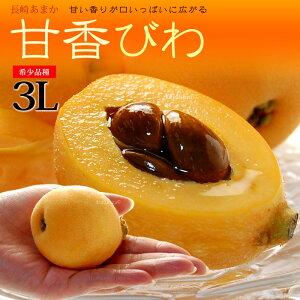 甘香びわ(3-4L/約1kg)長崎産 秀品 ギフト 贈答用 大玉 ビワ 枇杷 ハウス栽培 食品 フルーツ 果物 びわ 甘香(あまか) 送料無料