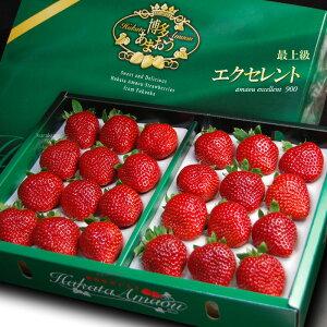 あまおうEX(約900g)福岡産 あまおう苺 あまおうエクセレント 博多 いちご 苺 イチゴ 甘王 食品 フルーツ 果物 いちご 送料無料